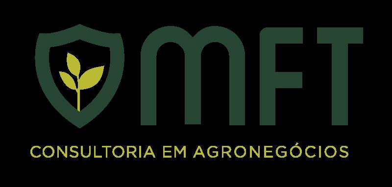 MFT Consultoria